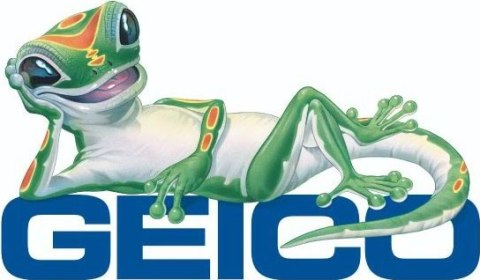 Geico Insuance Pic 1